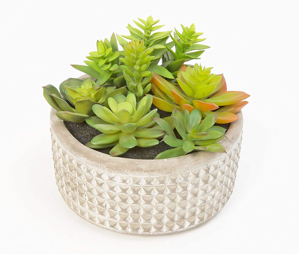Artificial Succulent Arrangement in Stoneware Grey Pot, 6 inches x 5 inches, Faux Succulent Plant