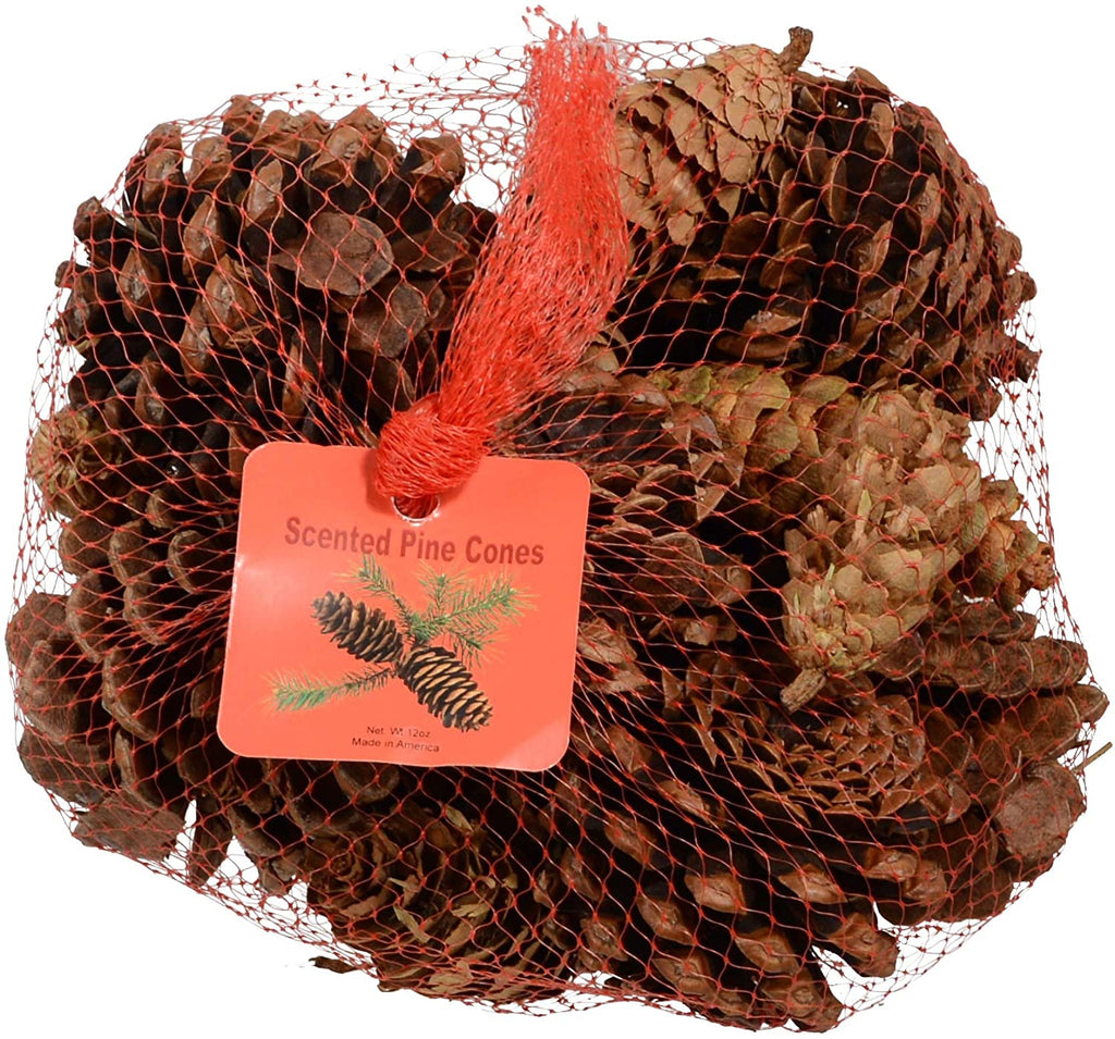 Innovative Fragrances Inc. Cinnamon Scented Pine Cones 12 Ounce Bulk Bag, Made in The USA, Bowl Filler