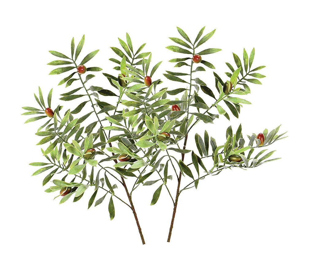 Ten Waterloo Set of 2 Wine Country Olive Branches, Artificial Olive Stems 25 Inches High