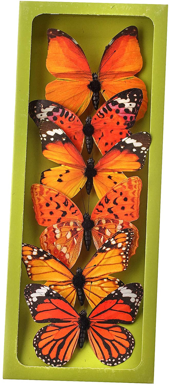 Set of 6 Butterfly Picks, 4 Inches x 3 Inches, Monarch Butterfly Dimensional Accents with 3-Dimensional Bodies and Antennae