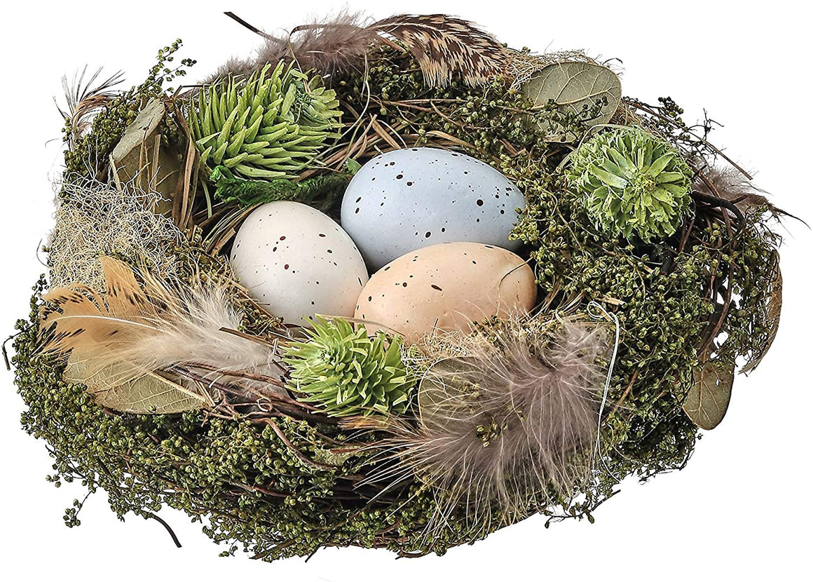 Aviary Bird Nest with Eggs 6""