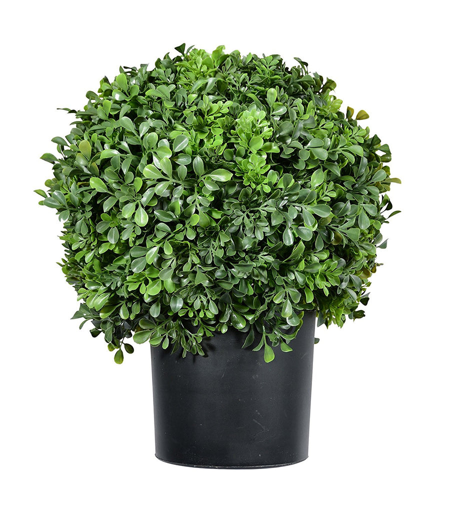 Pre-Potted 16 Inches High Ball Shaped Boxwood Topiary- 14 Inch Diameter - Plastic Pot
