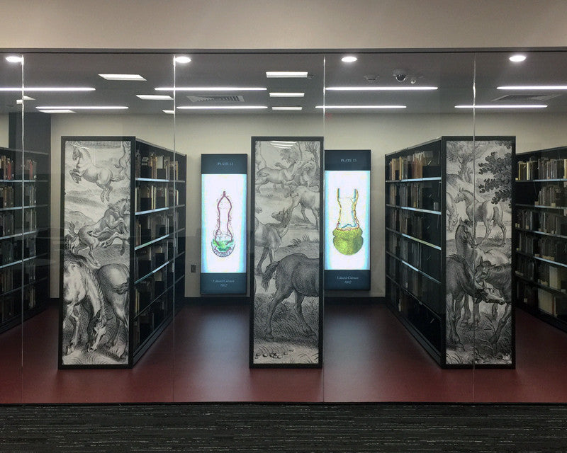 Custom Poster Frames and Backlit LED Fabric Light Boxes at Texas A&M Medical Science Library