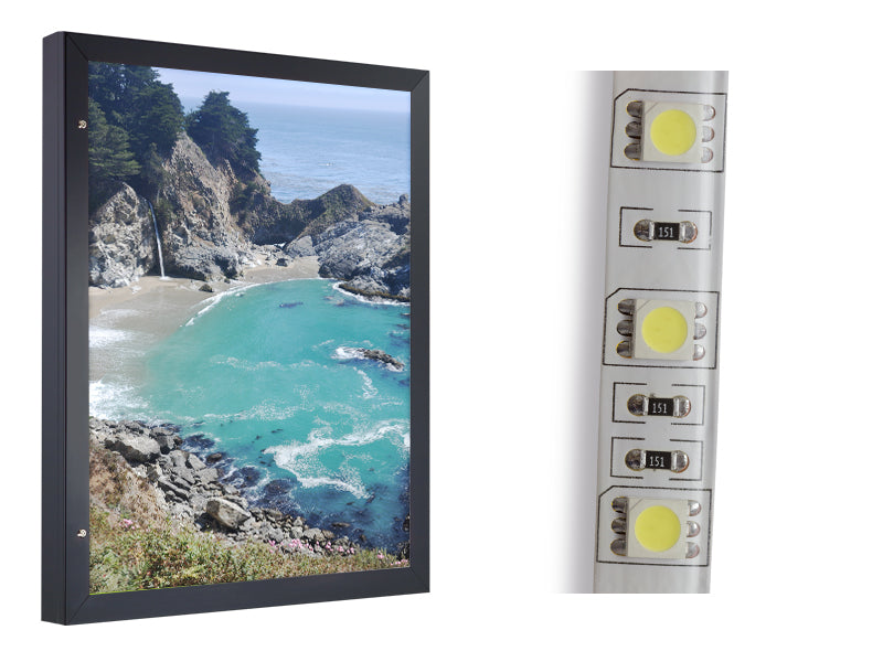 Hidden Hinge Light Box with LED Lighting