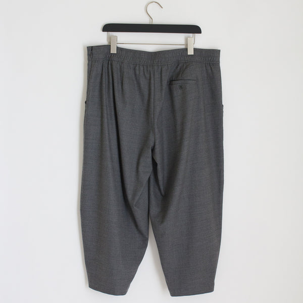 Eileen FIsher Wool Lantern Pants - XL