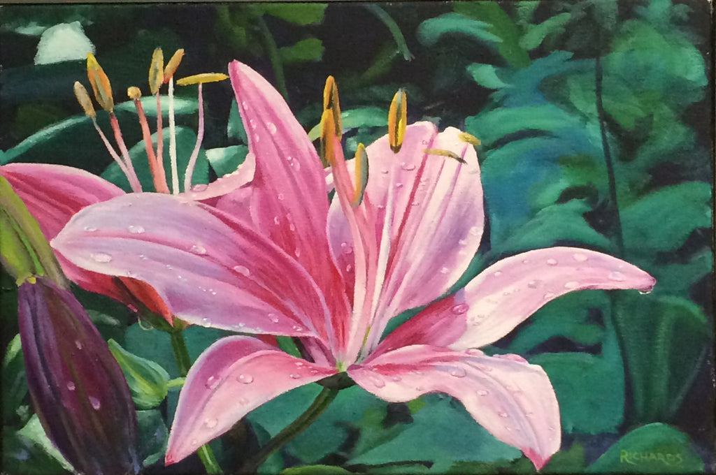 Pink Lily With Dew