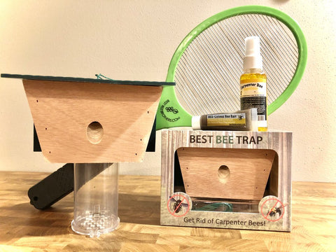 Best Bee Brothers Bee Kit