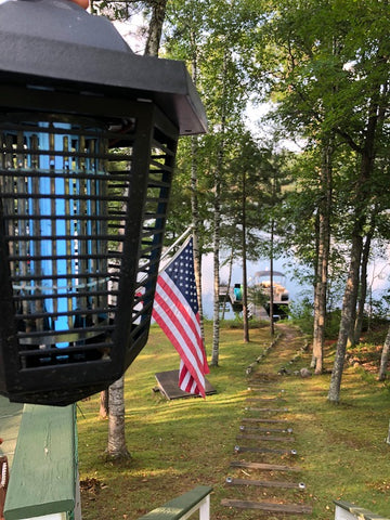 Where to Put a Bug Zapper: Best Way to Hang a Bug Zapper