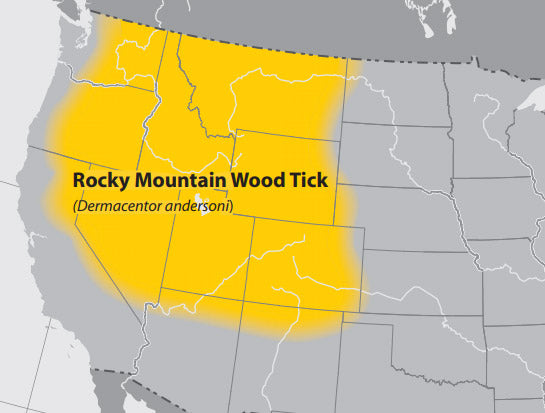 The rocky mountain wood tick is throughout the range of the rocky mountains.