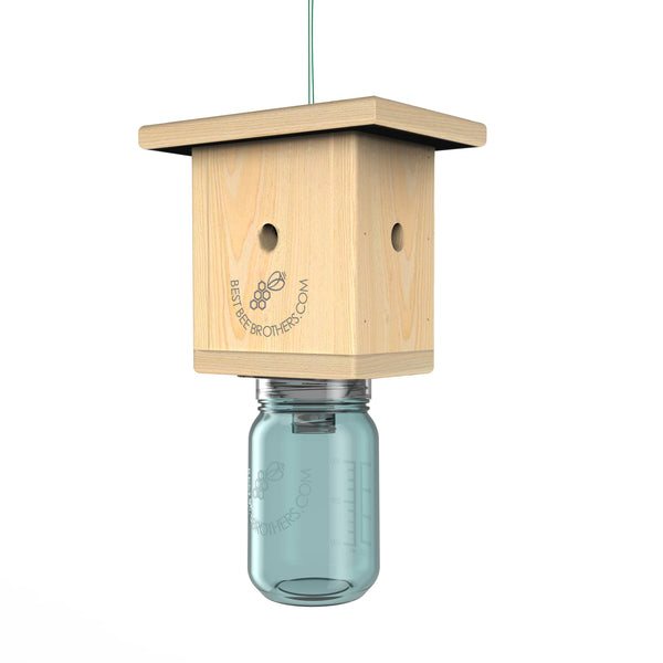 Carpenter Bee Box Trap - with Mason Jar