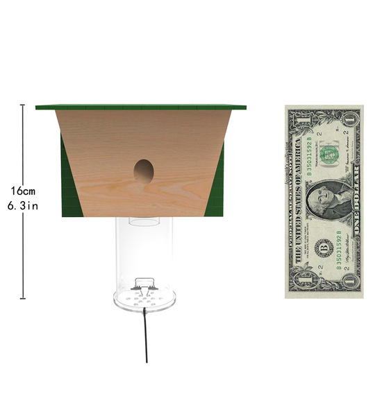 Best Bee Trap Size Reference | Best Bee Brothers