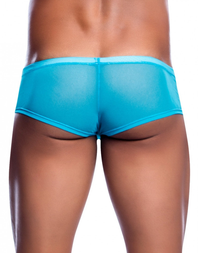 Turquoise Back Malebasics Cheeky Brief