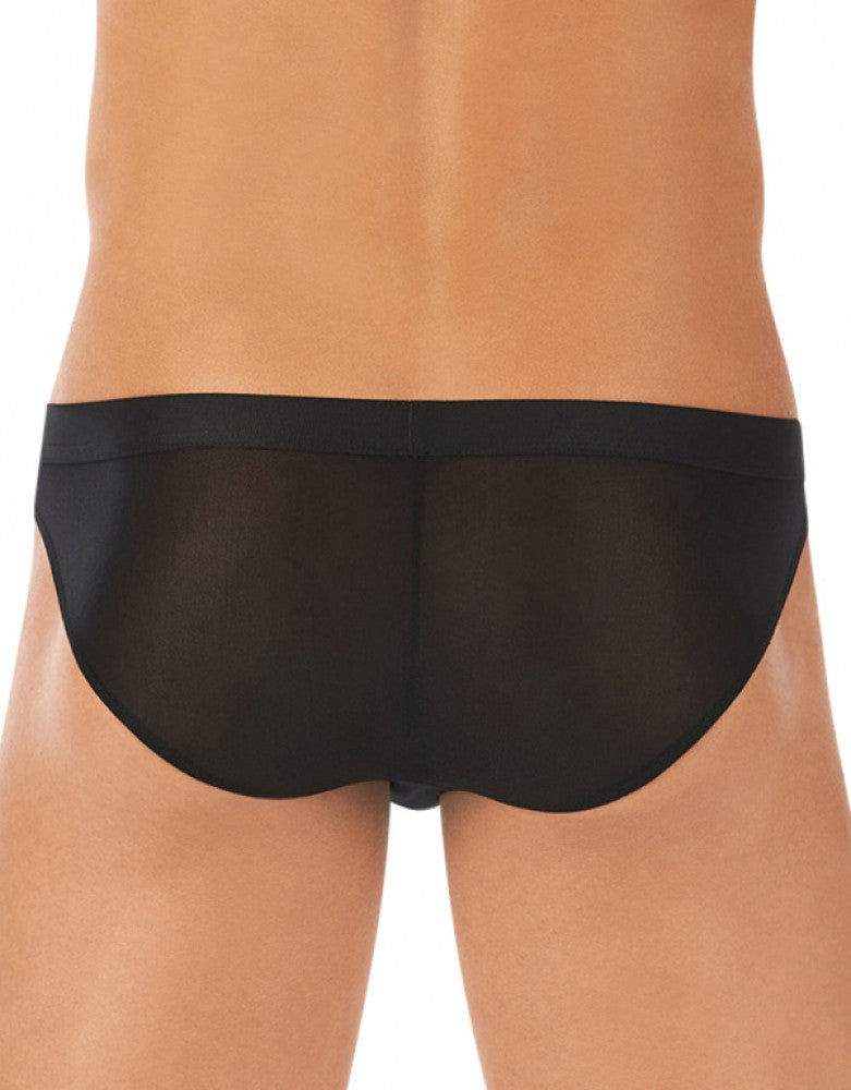 Black Back Gregg Homme Torrid Brief