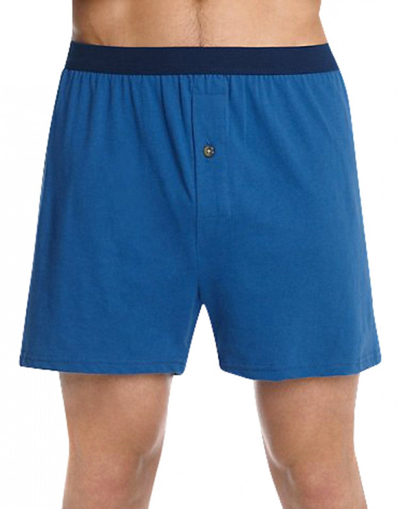 Assorted Back Hanes 5-Pack ComfortSoft Knit Boxer Shorts