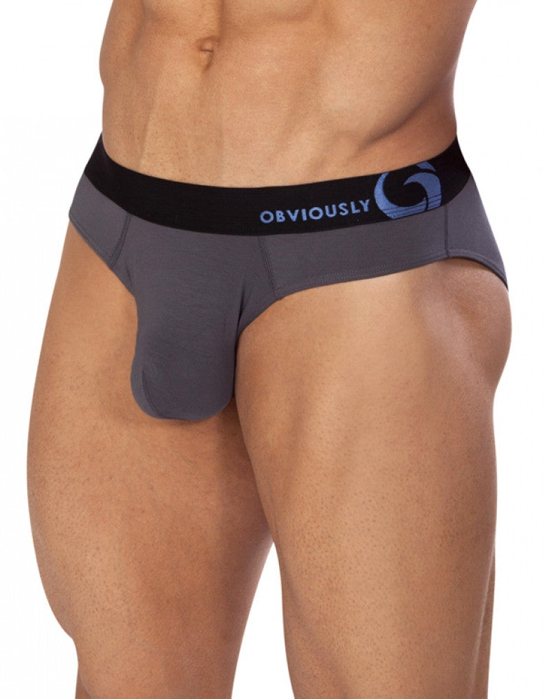 Graphite Side Obviously Essence AnatoFREE Hipster Brief