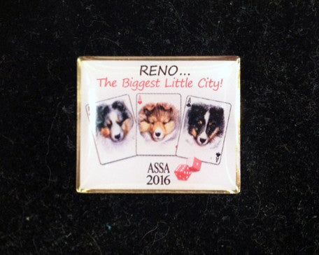 2016 ASSA National Lapel Pin