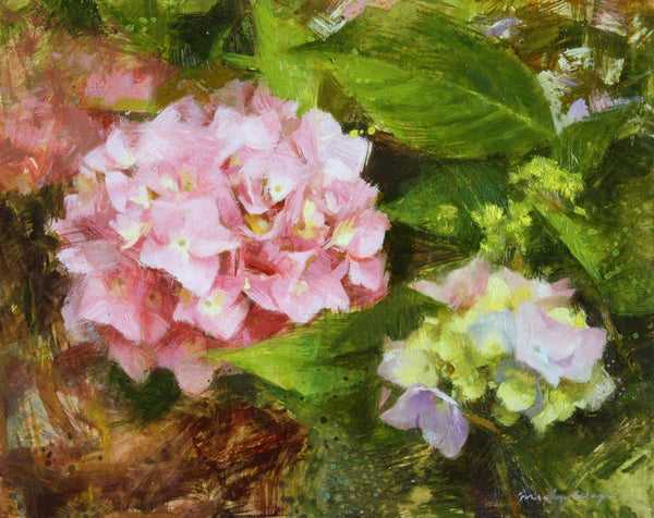 maria waye hydrangea oil painting pink green oil painting fine art toronto canadian artist flowers