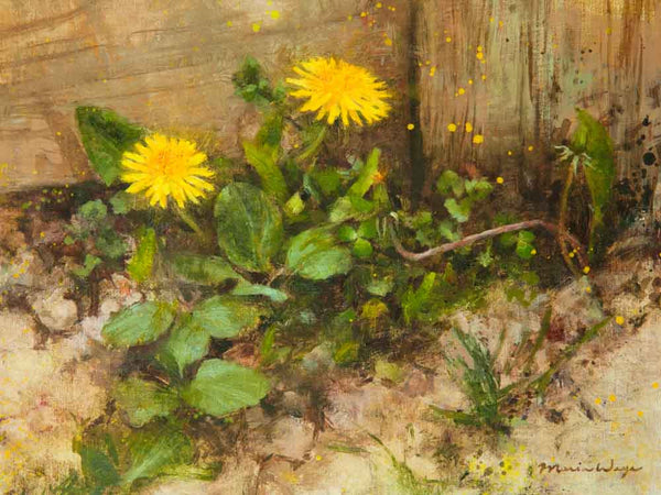 Dandelion original oil painting fine art realistic art on canvas by Toronto artist Maria Waye