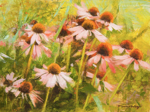 Echinacea purpurea flowers floral fine art Toronto floral artist Maria Waye coneflower oil painting oil on linen canvas original artwork for garden lovers