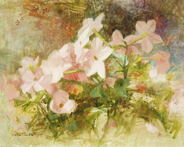 """Delicate Summer Stars"" Nicotiana Flowers Original Oil Painting"