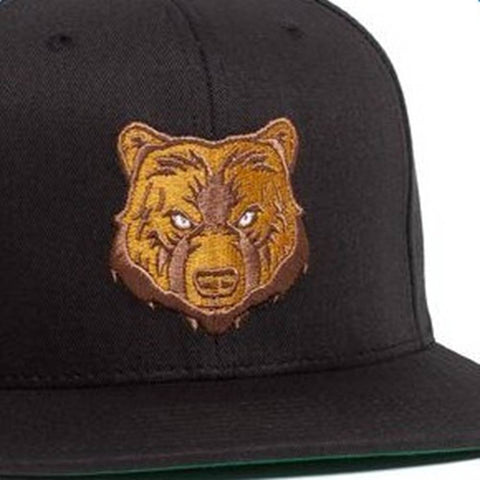 Grizzly Park Visitor Snapback