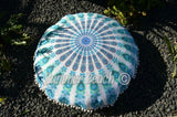 Floor Cushion Covers - White & Blue Peacock Mandala - FC3