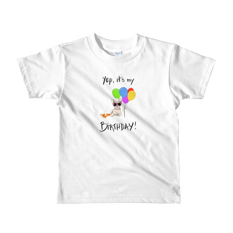 It's My Birthday kids t-shirt
