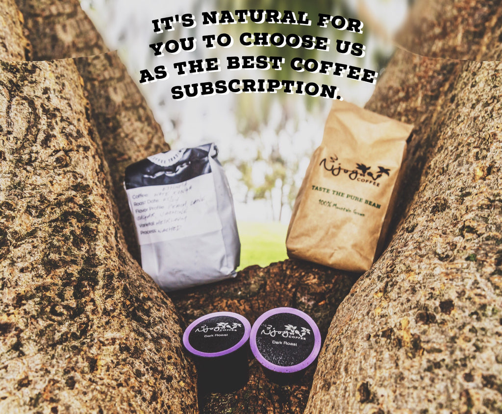 The Best Coffee Subscription