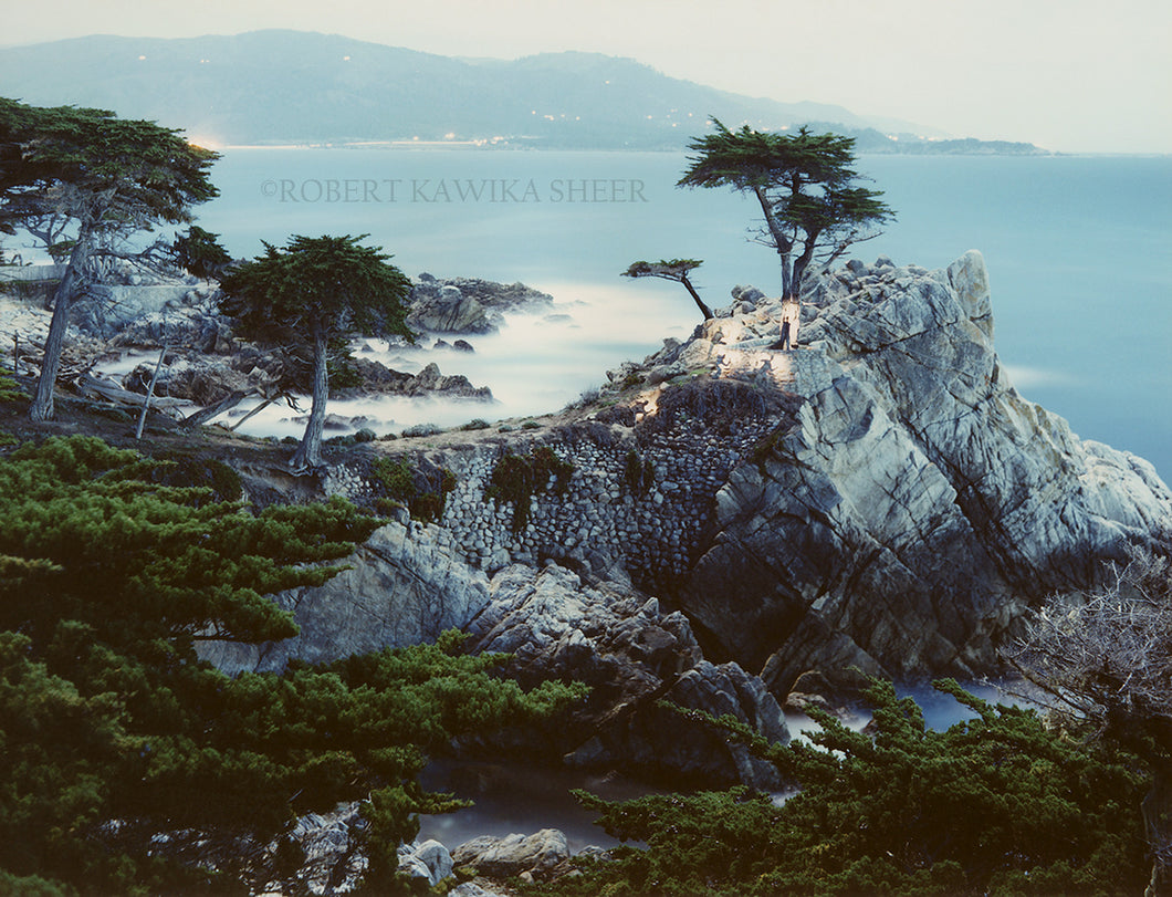 Spirits Honoring the Lone Cypress 1