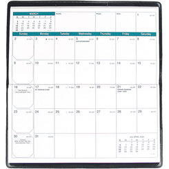 Quo Vadis Texas Visoplan Monthly Planner January 2017 to December 2017