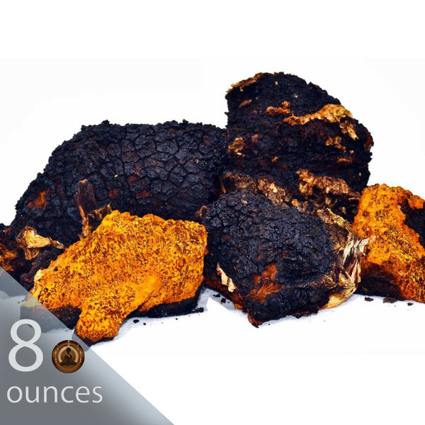 8 oz. Wild and Raw Chaga Chunks