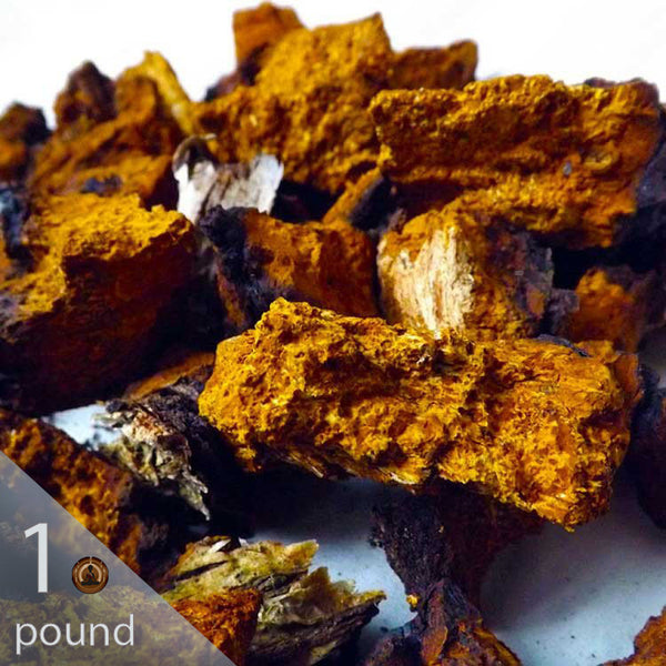 Bulk 100 lb. Wild and Raw Chaga Pieces