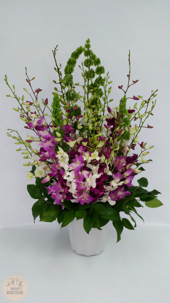 Bouquet d'Orchidées