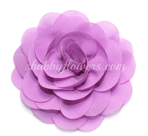 Rose - Lilac