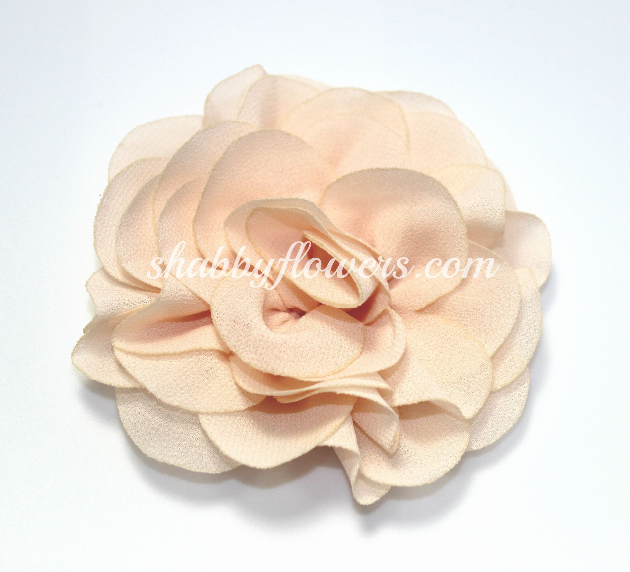 Rose - Peach - shabbyflowers.com