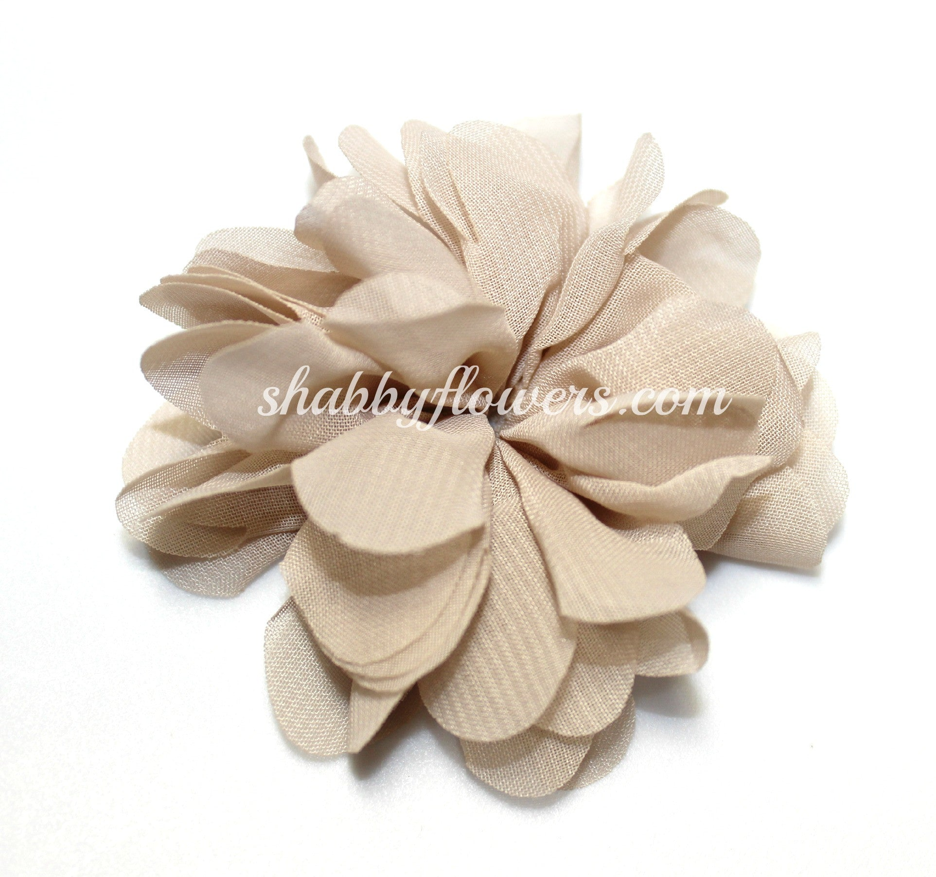 Scalloped Flower - Nude - shabbyflowers.com