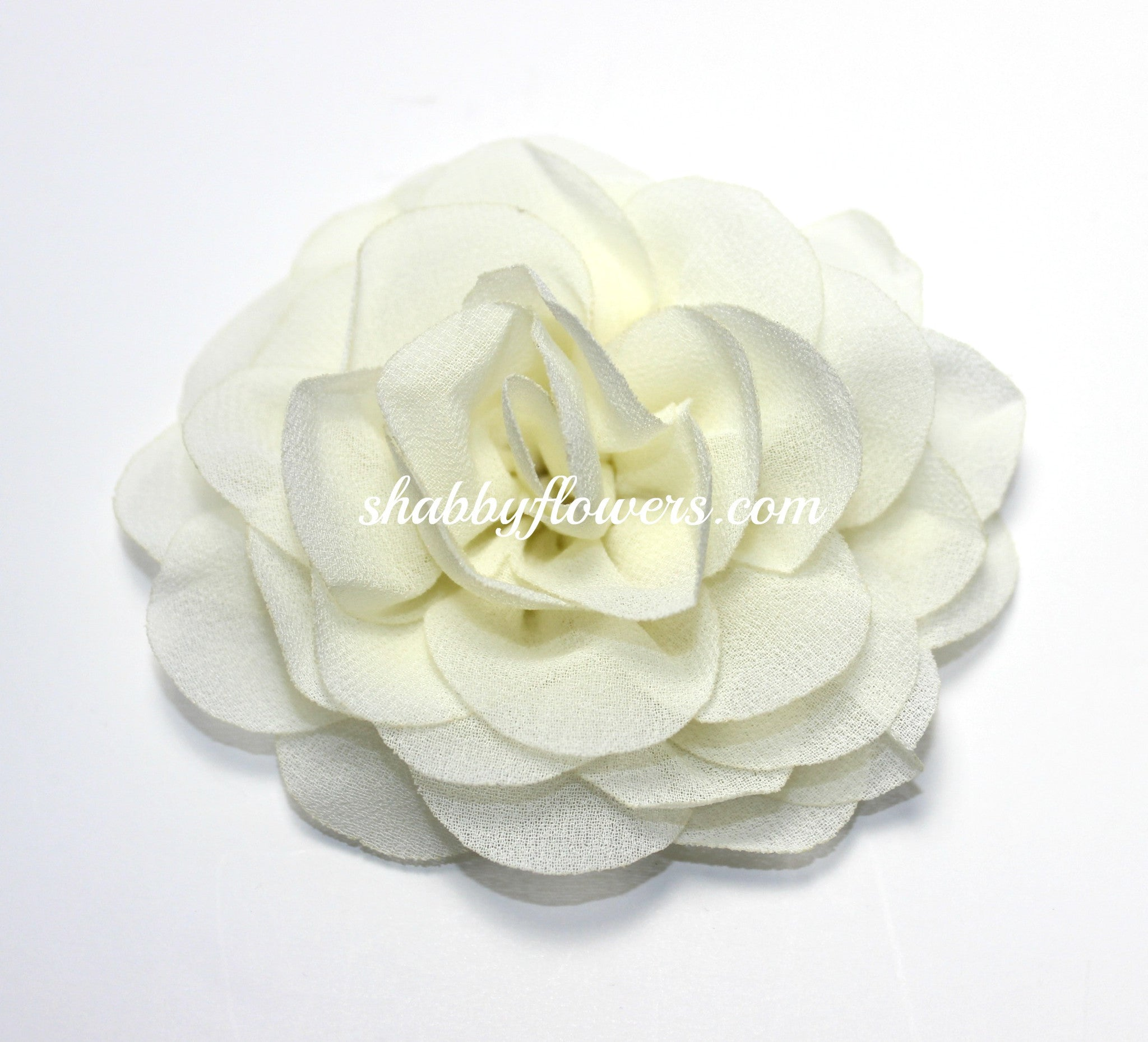 Rose - Ivory - shabbyflowers.com