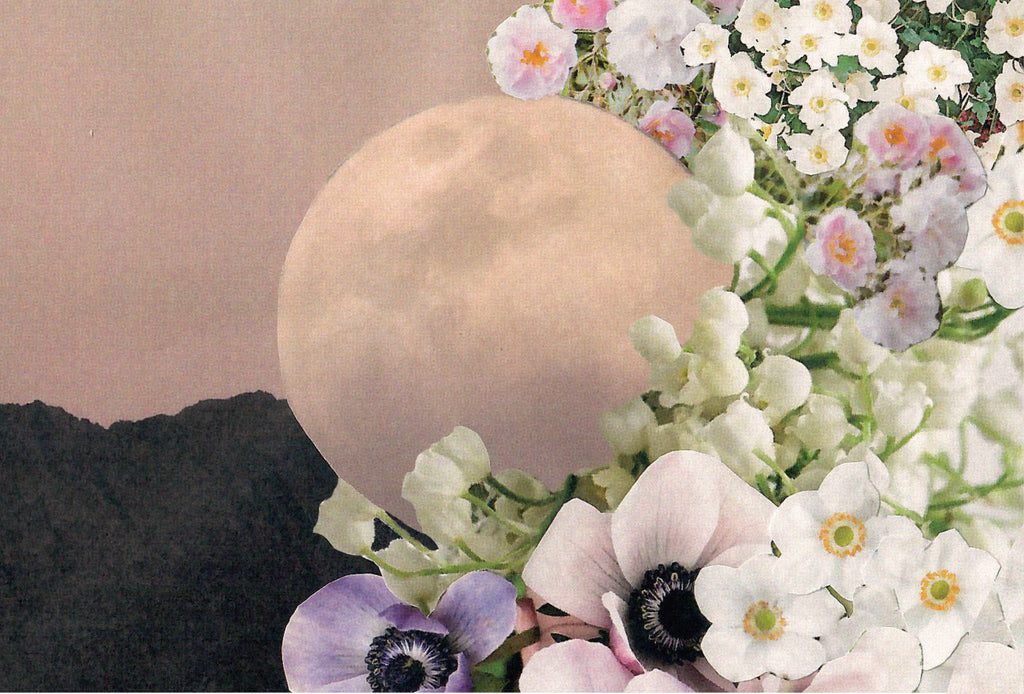 The Flower Moon