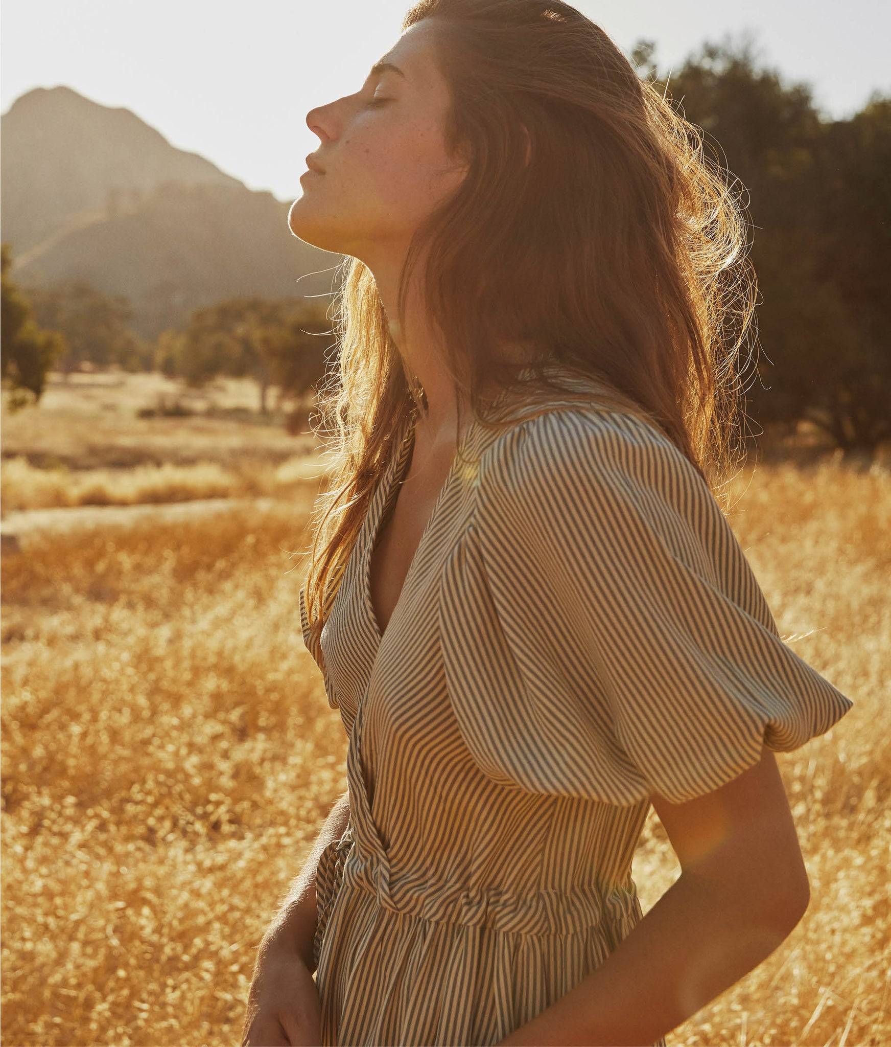The Dahlia Dress | Sepia Stripe