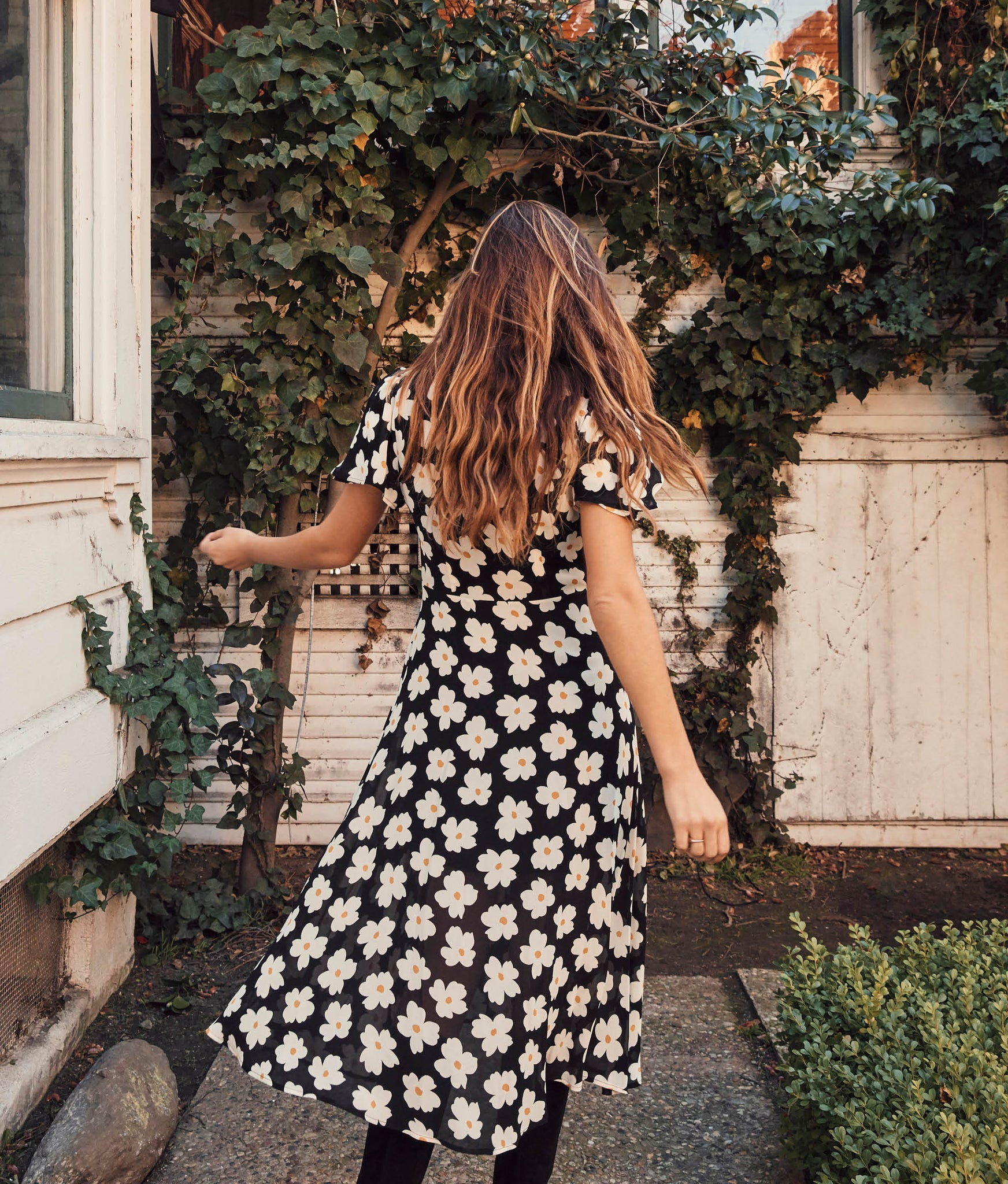 The Daisy Dress | English Daisy