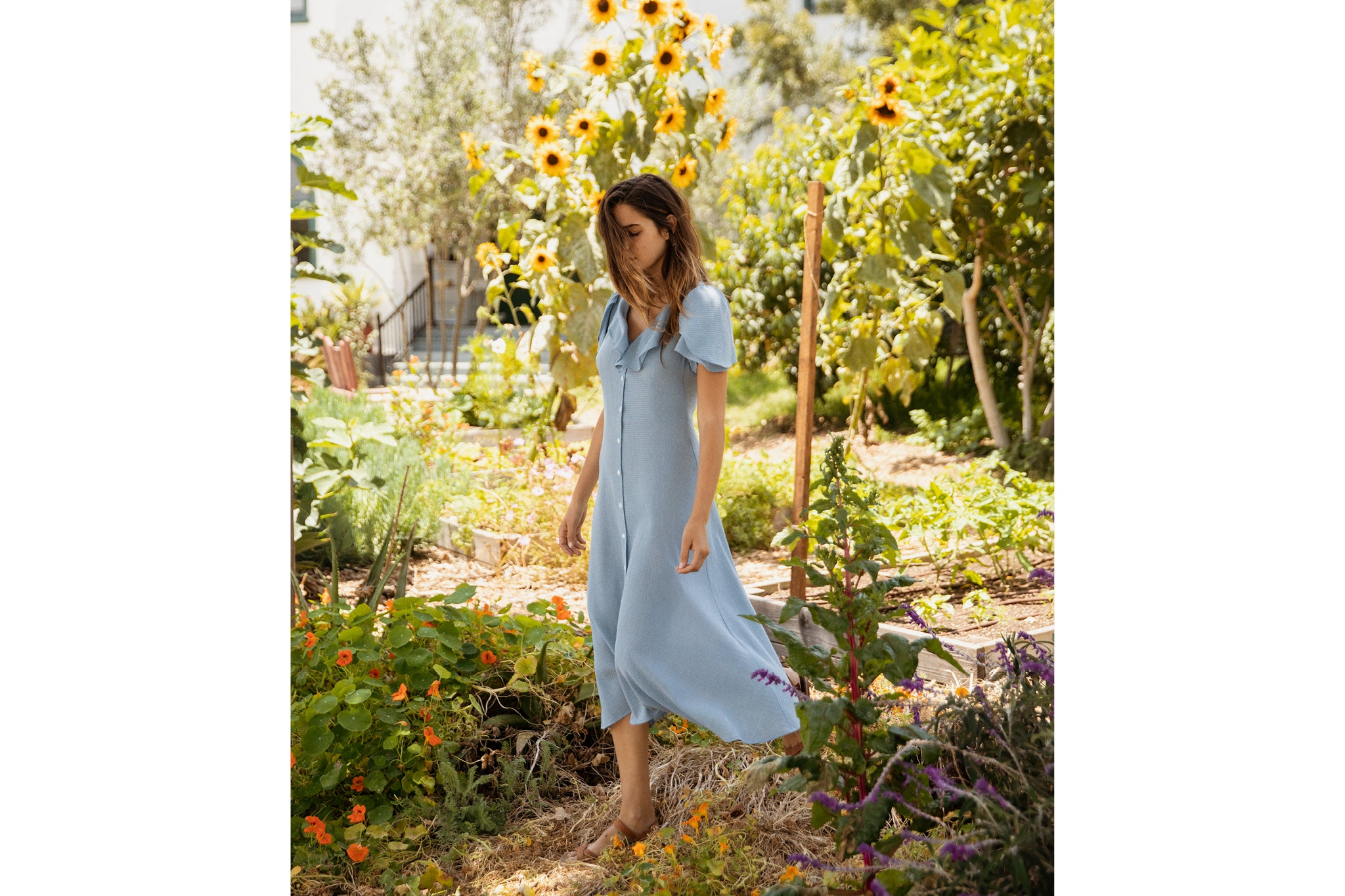 The Daisy Dress | Cornflower