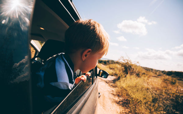 A Proven Remedy for Restless Kids on a Road Trip