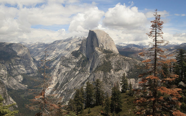 Yosemite National Park – Evidence for a Recent Ice Age