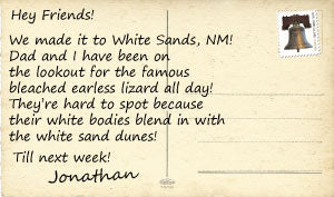 Greeting from White Sands National Monument Back