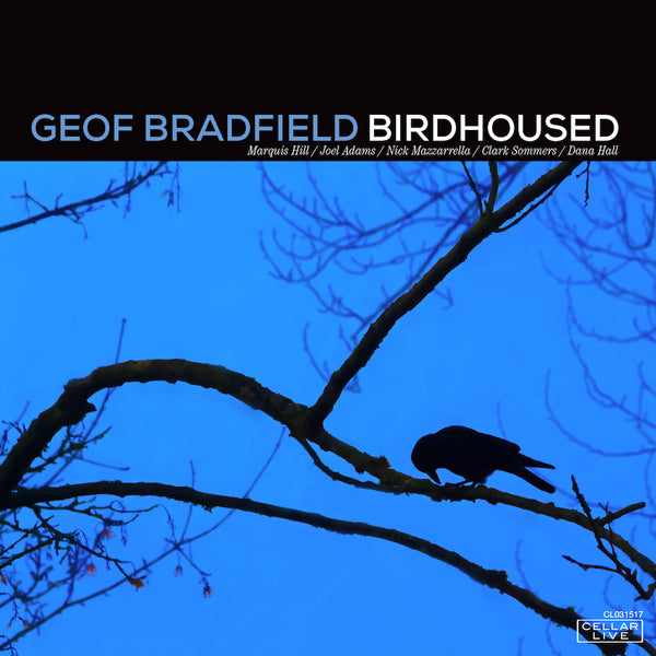 GEOF BRADFIELD - Birdhoused