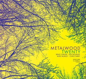 METALWOOD - Twenty