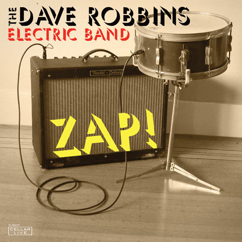 DAVE ROBBINS ELECTRIC BAND - Zap