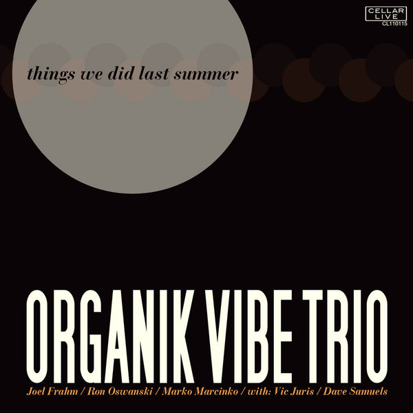 ORGANIK VIBE TRIO - Things We Did Last Summer