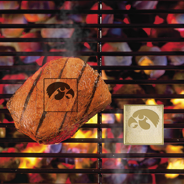 University of Iowa Fan Brands - FANMATS - Dropship Direct Wholesale