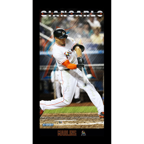 Giancarlo Stanton Miami Marlins Player Profile Wall Art 9.5x19 Framed Photo - Steiner Sports - Dropship Direct Wholesale